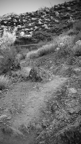 Cave Creek Go John Trail