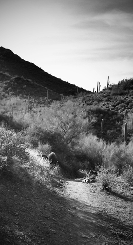 Cave Creek Recreation Area