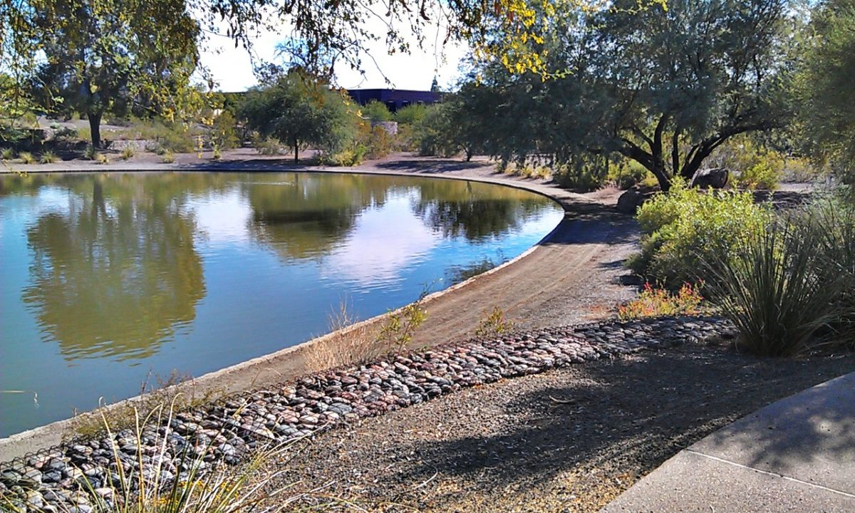 sitting area and pond at Hayden Park