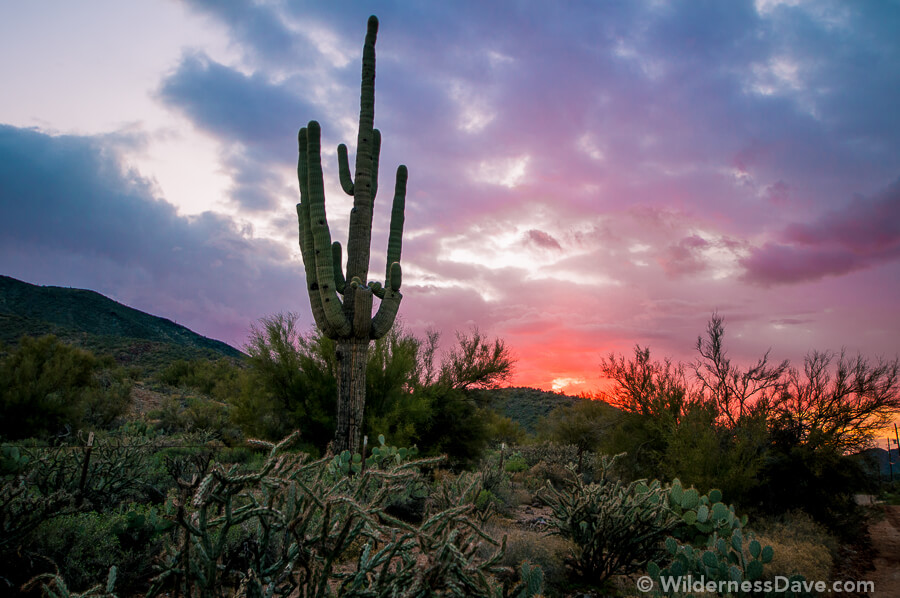 Photograph of the week - Cave Creek Sunset