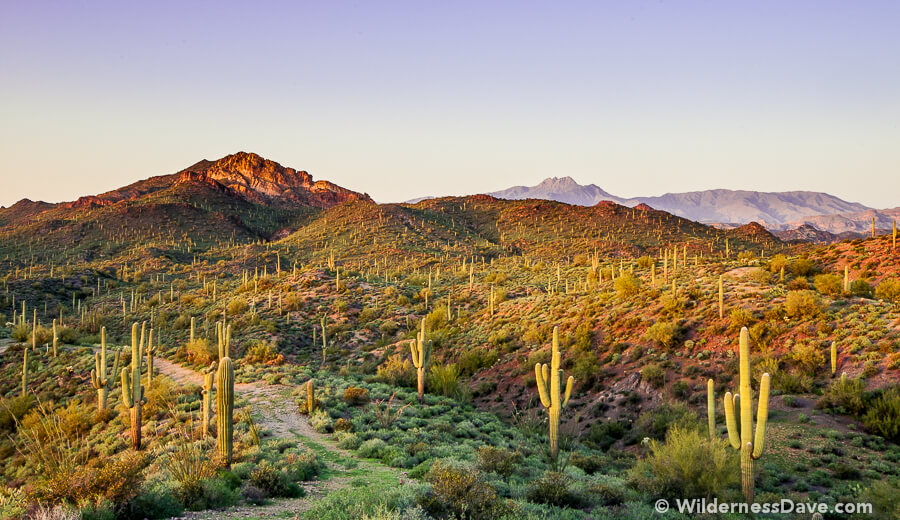 Photograph of the Week - Lost Dutchman and Four Peaks