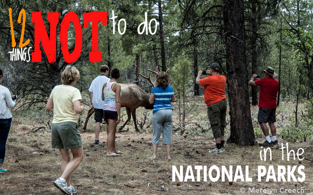 12 things NOT to do in National Parks